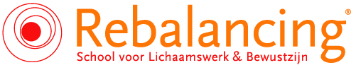 Rebalancing Workshops