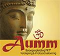 Aumm Institut
